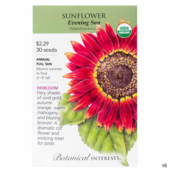 Botanical Interests Seeds Sunflower Evening Sun