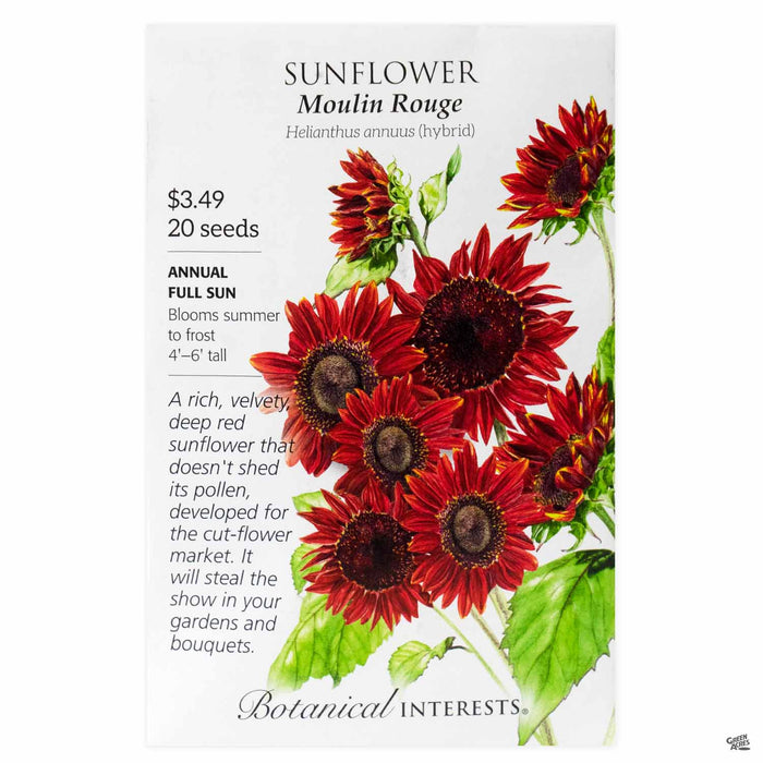 Botanical Interests Seeds Sunflower Moulin Rouge