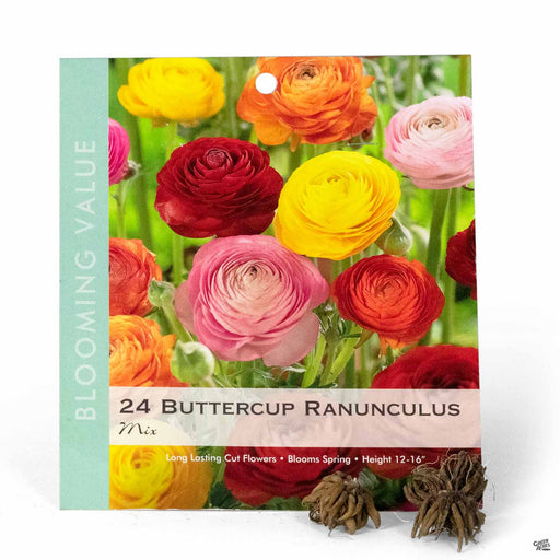 Buttercup Ranunculus Mix