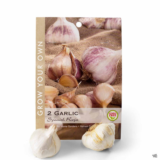 Garlic Spanish Roja Bulbs Package