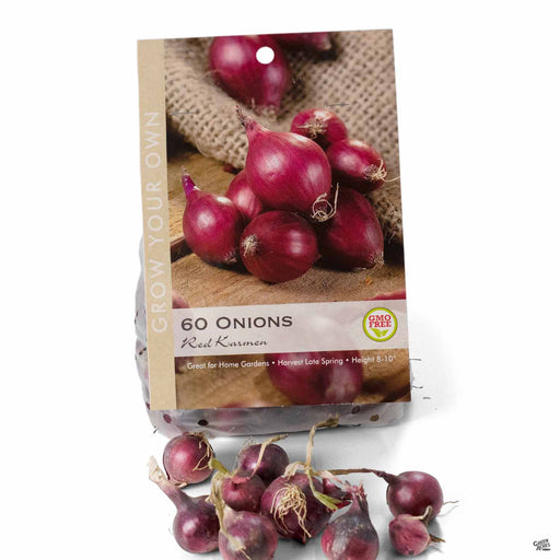 Onion Red Karmen Bulbs Package