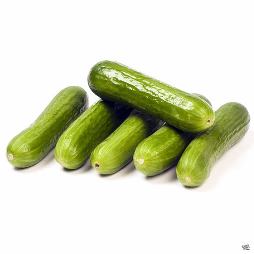 Persian Cucumber Fruit