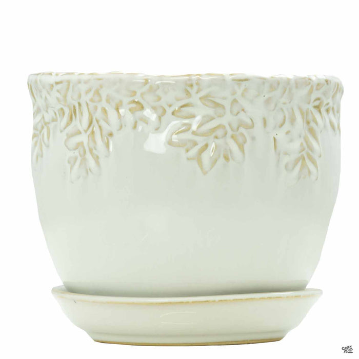 Ivy League Jardiniere 7.5 inch