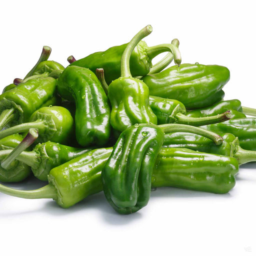 Pepperoncini fruit
