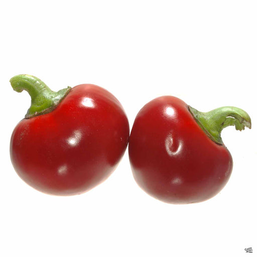 Pimento Elite Pepper fruit