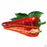 Sweet Italian Pepper