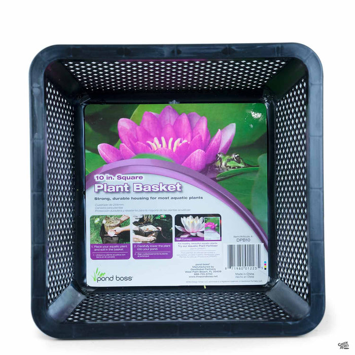 Water Plant Basket 10 inch