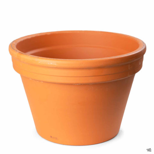 Terracotta German Clay Azalea Pot 12.25 inch