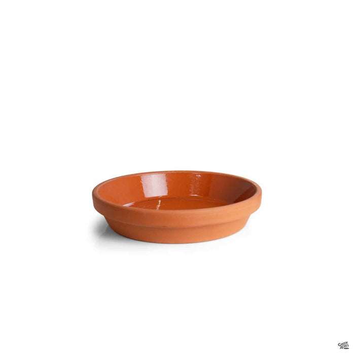 Terracotta German Clay Saucer 7.75 inch