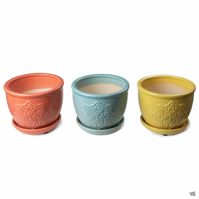 Medallion Planter 6 inch in Assorted Colors