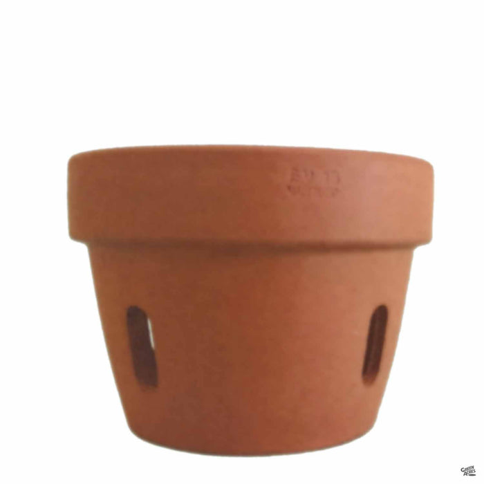 Orchid Clay Pot in Terracotta