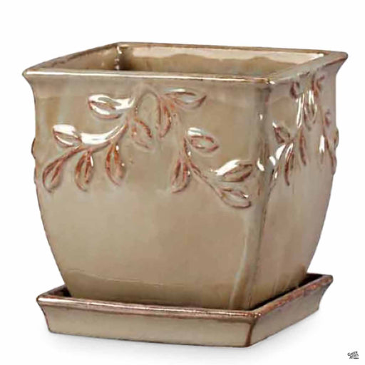 Vine Rim Square Planter 6 inches