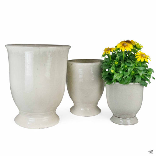 Flamenco Urn Planter