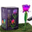 Solar Mini Tulip Stake Purple