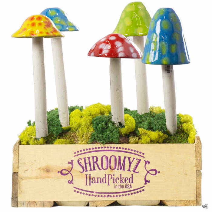 Assortment of Funtastic Shroomyz, Medium and Large