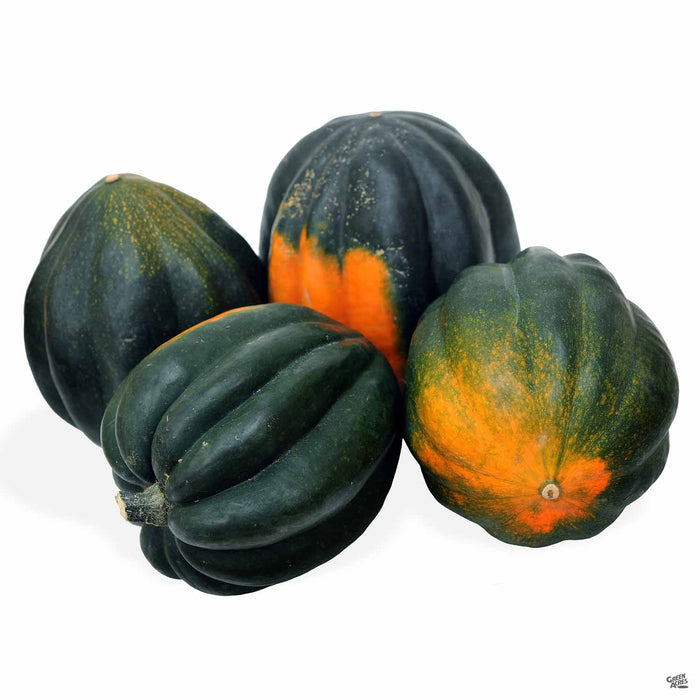 'Table Ace' Squash
