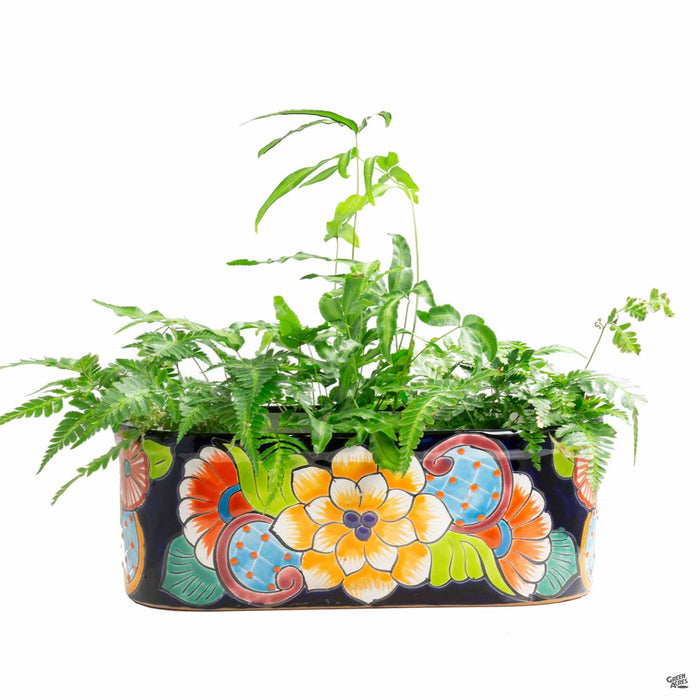 Talavera Window Planter with Plant
