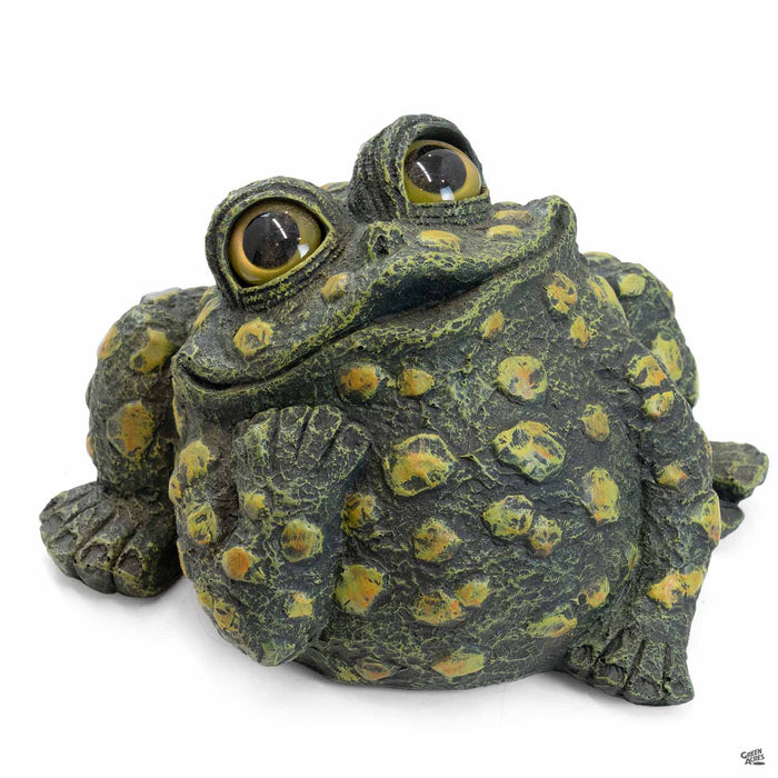 Toad Hollow Dreamer Toad Large in Dark Natural
