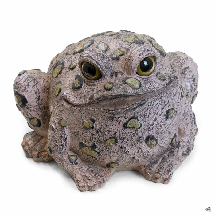 Toad Hollow Toad Figurine Large in Natural