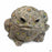 Toad Hollow Toad Figurine Medium in Natural