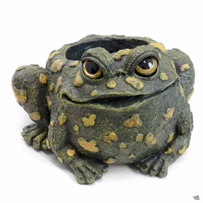 Toad Hollow Toad Planter 4 inch in Dark Natural