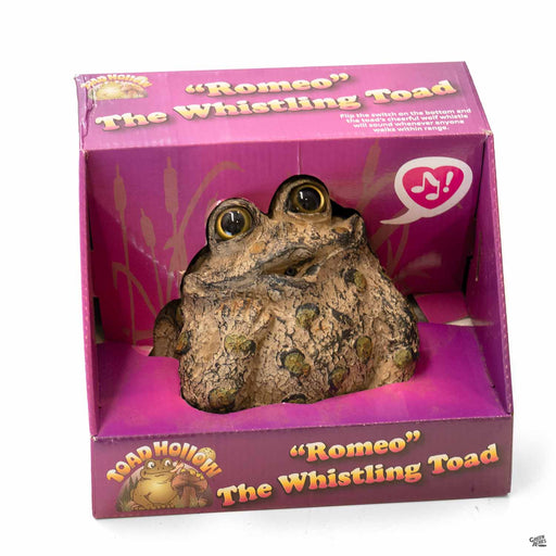 Toad Hollow Dreamer Romeo Whistling Toad