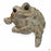 Toad Hollow Toad Shelf Sitter Medium