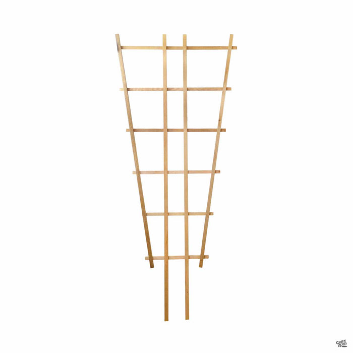 Cedar Fan Trellis 24 inches wide by 66 inches tall