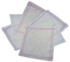 Passionelle Ladies White 100% Cotton Handkerchiefs With Stripes - Pack of 6