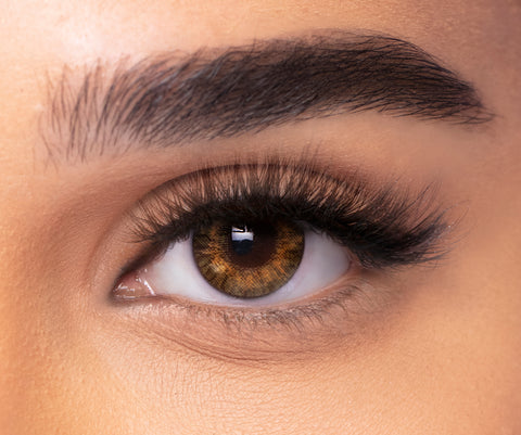 Coloured Contact Lenses Pure Hazel  -6476