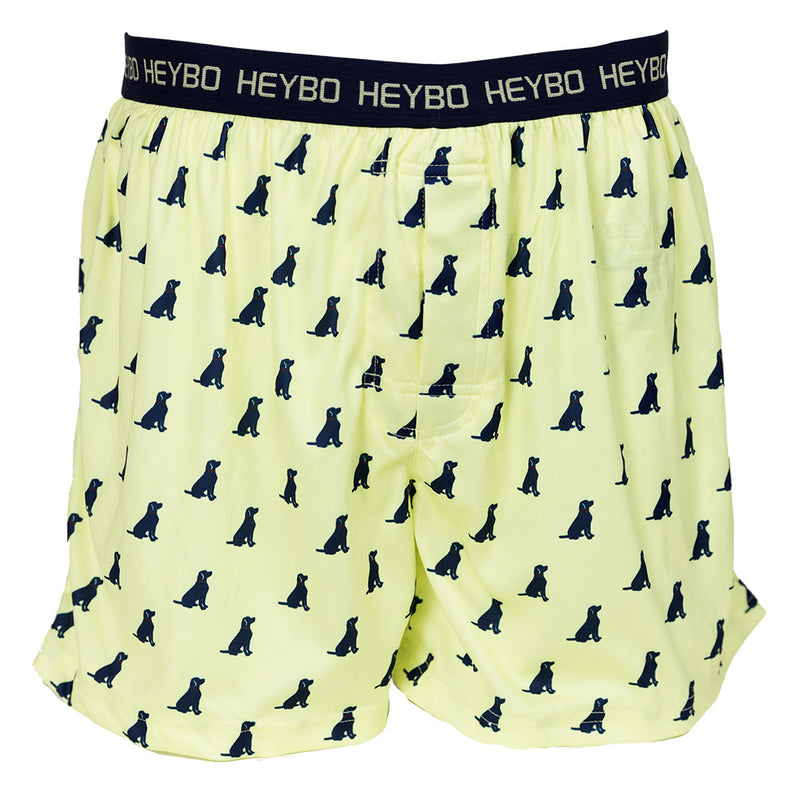 Lab Performance Boxers - HeyboOutdoors