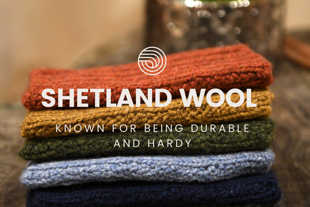 SHETLAND WOOL - The perfect new winter standard