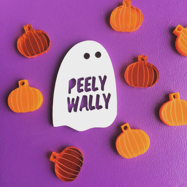 Peely Wally Ghost Pin Brooch
