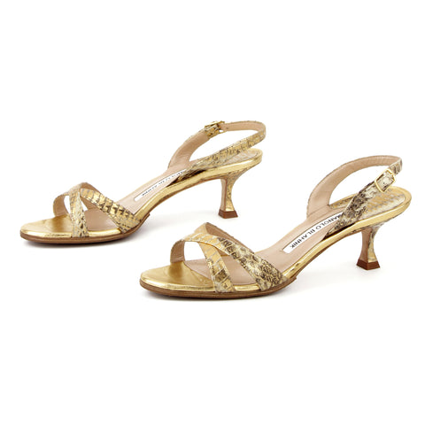 Manolo Blahnik Callasli Golden Snake Criss-Cross Sandals sz 35.5 / 5.5