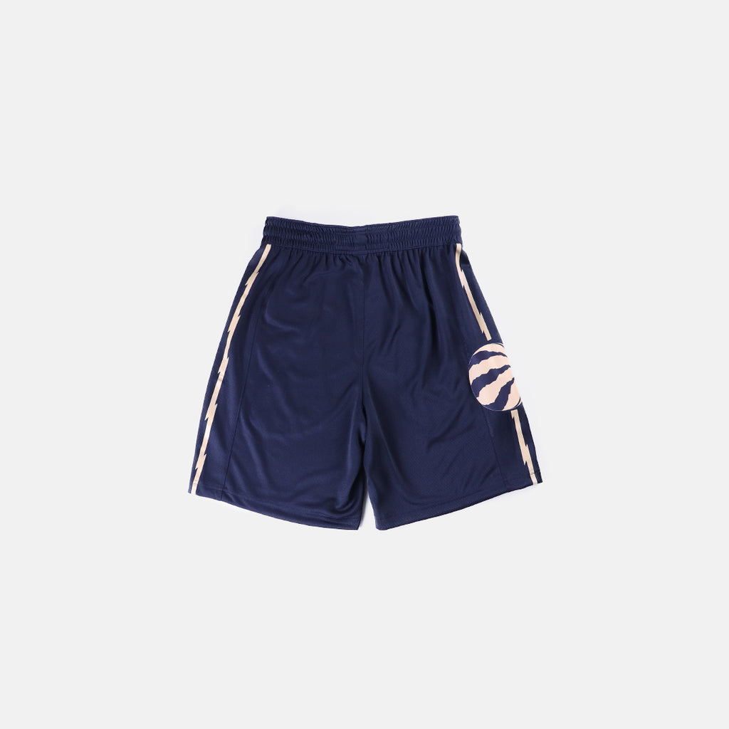 Nike Toronto Raptors Swingman Shorts City Edition