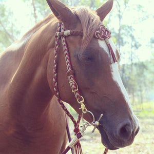 Fairytale Bridle - Original