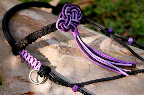 3in1 Bitless Bridle - Purple Kampos