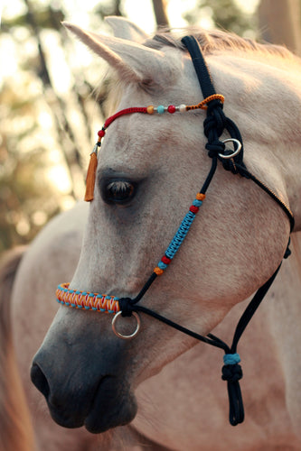 3in1 Bitless Bridle - Cheyenne