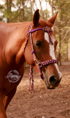 Fairytale Bridle - Purple Cowgirl