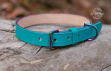 Load image into Gallery viewer, Luxury Dog Collar - Mermaid