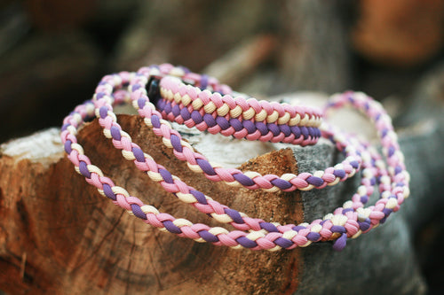 Dog Collar - Midnight Rose - Pastel