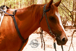 IN STOCK Breastplate; Woodland, Arab Size