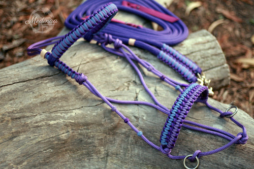 Hackamore Style Bitless Bridle; Purple Crush