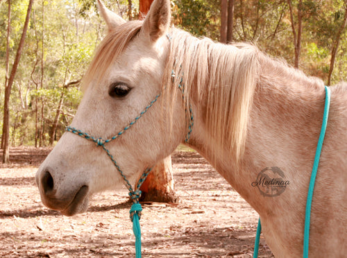 IN STOCK Rope Halter and 8ft Lead Rope - Turquoise - Cob