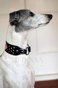 Luxury Dog Collar - Flashback