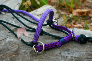 3in1 Bitless Bridle - Purple