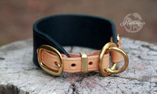 Load image into Gallery viewer, Luxury Dog Collar - Regio