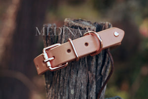 Dog Collar - Evelyn
