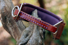 Load image into Gallery viewer, Luxury Martingale Collar - Rory