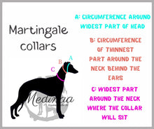 Load image into Gallery viewer, Martingale Dog Collar - Teal/Grey
